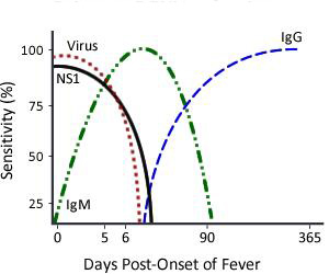 Primary DENV Infection chart