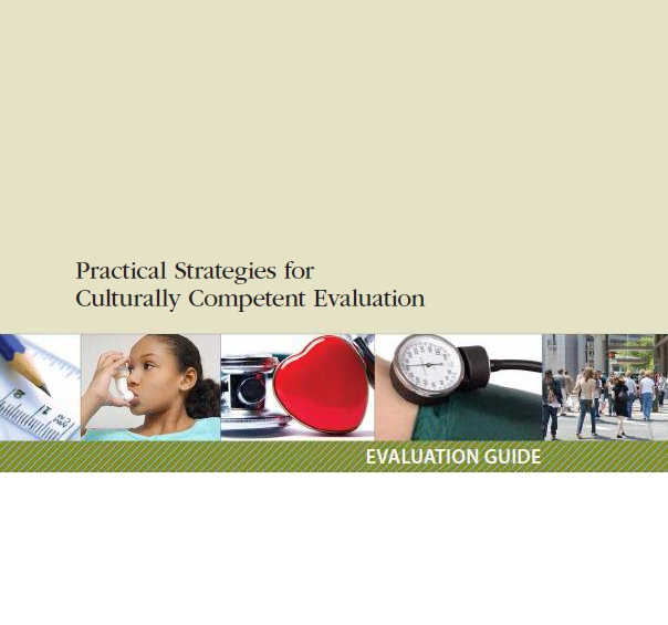 Cultural competence guide.