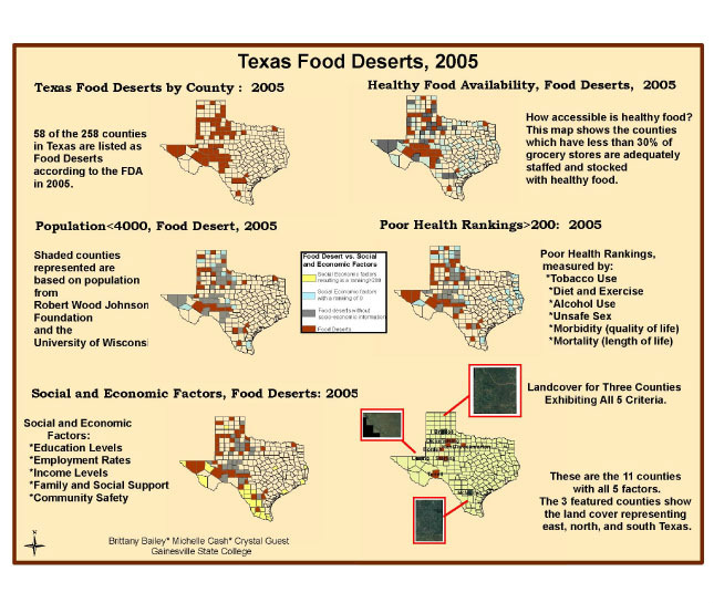 Texas Desert Map GIS Exchange|Map Details   Food Deserts in Texas|DHDSP|CDC
