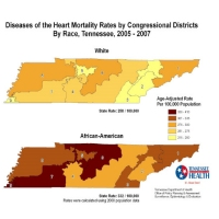 Diseases of the Heart Mortality Rate by U.S. Congressional District, Tennessee 2005-2007