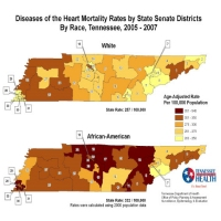 Diseases of the Heart Mortality Rate by Senate District, Tennessee 2005-2007