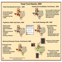 Food Deserts in Texas; 2005 and Social Impacts