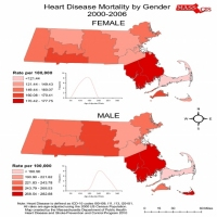 Heart Disease Mortality by Gender