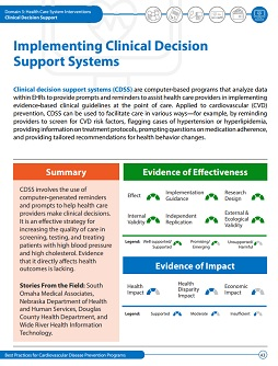 Implementing Clinical Decision Support Systems cover