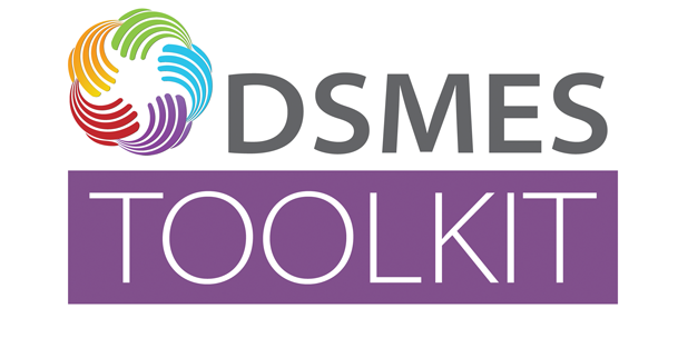 DSMES Toolkit
