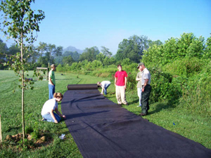 people building a walking path through a park