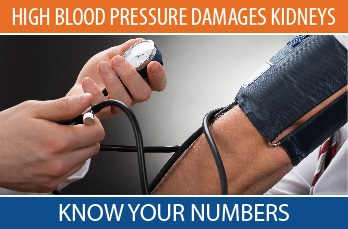 High Blood Pressure Damages Kidneys. Know Your Numbers.