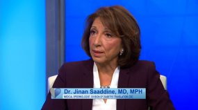 Dr Jinan Saaddine, MD, MPH Medical Epidmeologist, Division of Diabetes Translation, CDC