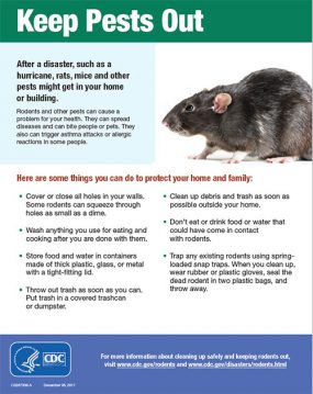 Cover page of CDC flyer with an image of a rat - keep pests out