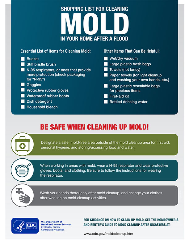Shopping list for post flooding mold cleanup