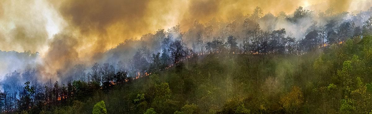 Wildfire smoke and flames, U of Cal: UCSF