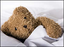 Photo of teddy bear in blanket.