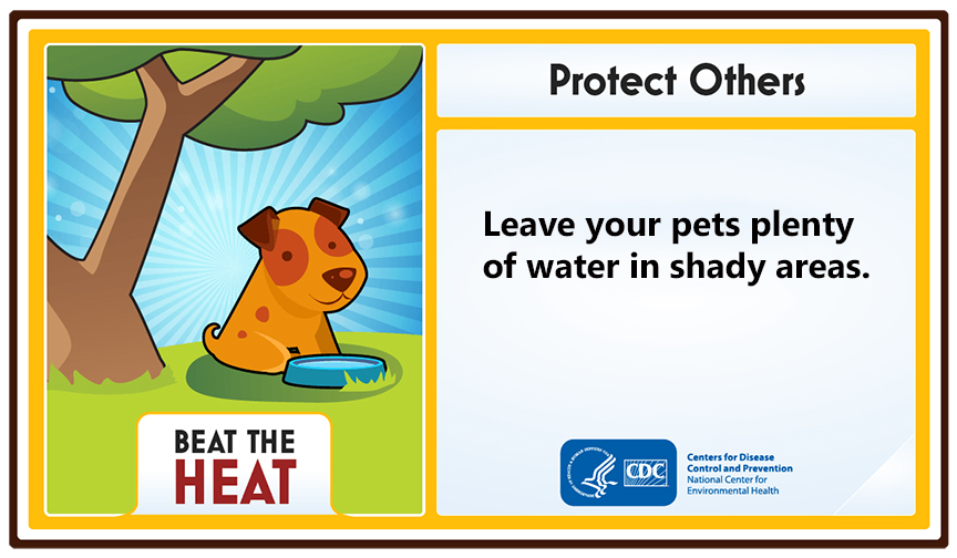 Protect Others. Leave your pets plenty of water in shady areas.