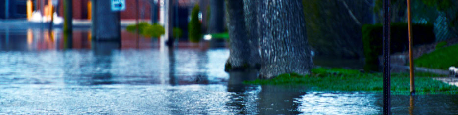 Floodwater After a Disaster or Emergency | CDC