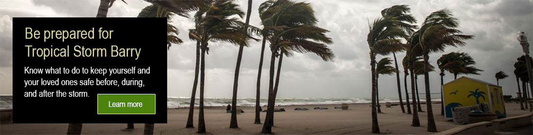 a picture of palm trees on a beech being blown by heavy winds with dark clouds offshore.