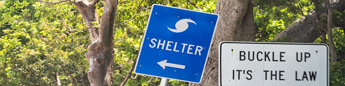 Ir a un refugio público para desastres