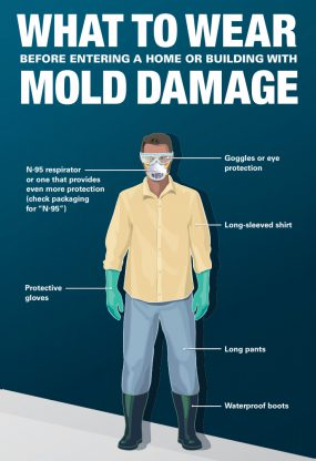 What to Wear before entering a Home or Building with Mold Damage