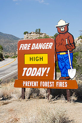 Photo of a Smokey Bear road side sign.