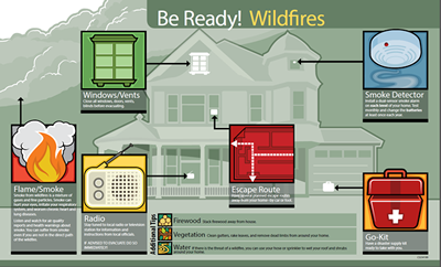 Image of Wildfires Infographic