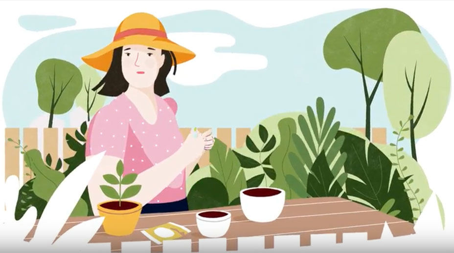 Screenshot from Community Garden video