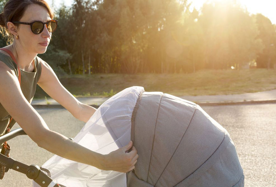 Baby and stroller covered by mosquito netting