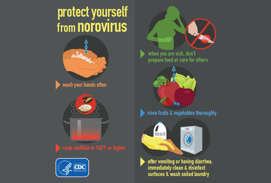 Infographic on how to protect yourself for norovirus