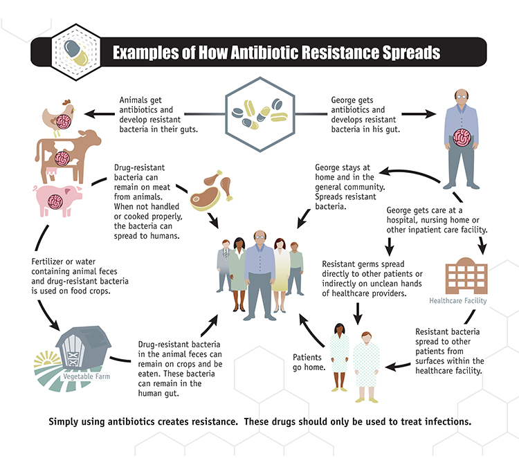 About Antimicrobial Resistance | Antibiotic/Antimicrobial ...