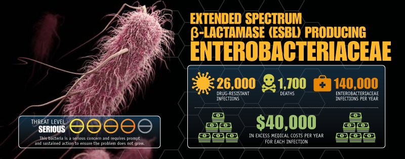 Extended Spectrum Enterobacteriaceae image