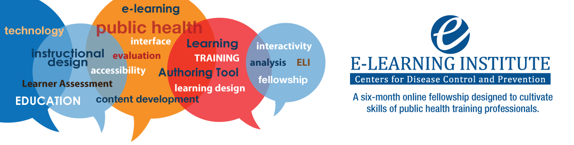E-learning Institute Fellowship