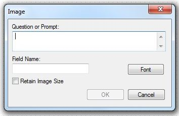 Image showing the Image Field Definition Dialog box.