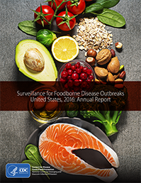 cover image of 2016 Foodborne Outbreak report