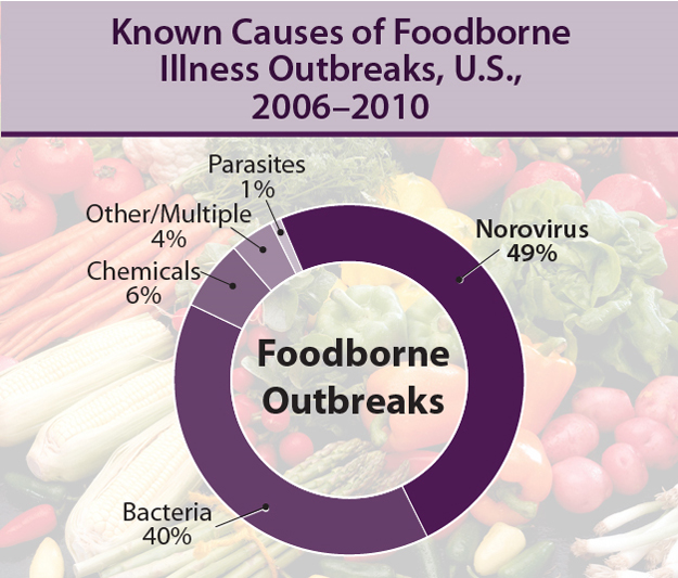 Known Causes of Foodborne Illness Outbreaks, U.S., 2006-2010. Norovirus 49%; Bacteria 40%; Chemicals 6%; Parasites 1%; Other/Multiple 4%.