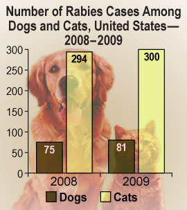 Chart: Number of Rabies Cases Among Dogs and Cats, United States, 2008-2009
