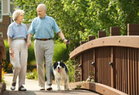 Photo: Senior couple walking dog