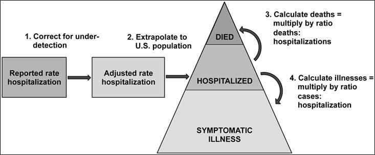 Graphic Illustration of Influenza Burden Estimates