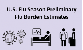 U.S. Flu Season Preliminary Flu Burden Estimates