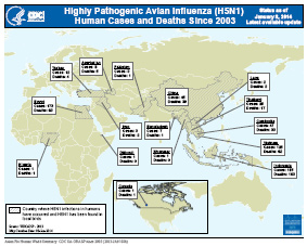 This map shows where highly pathogenic avian influenza H5N1 cases and deaths have occurred around the world since 2003.
