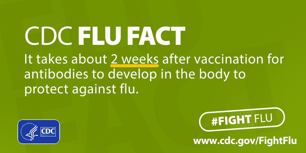 CDC Flu Fact