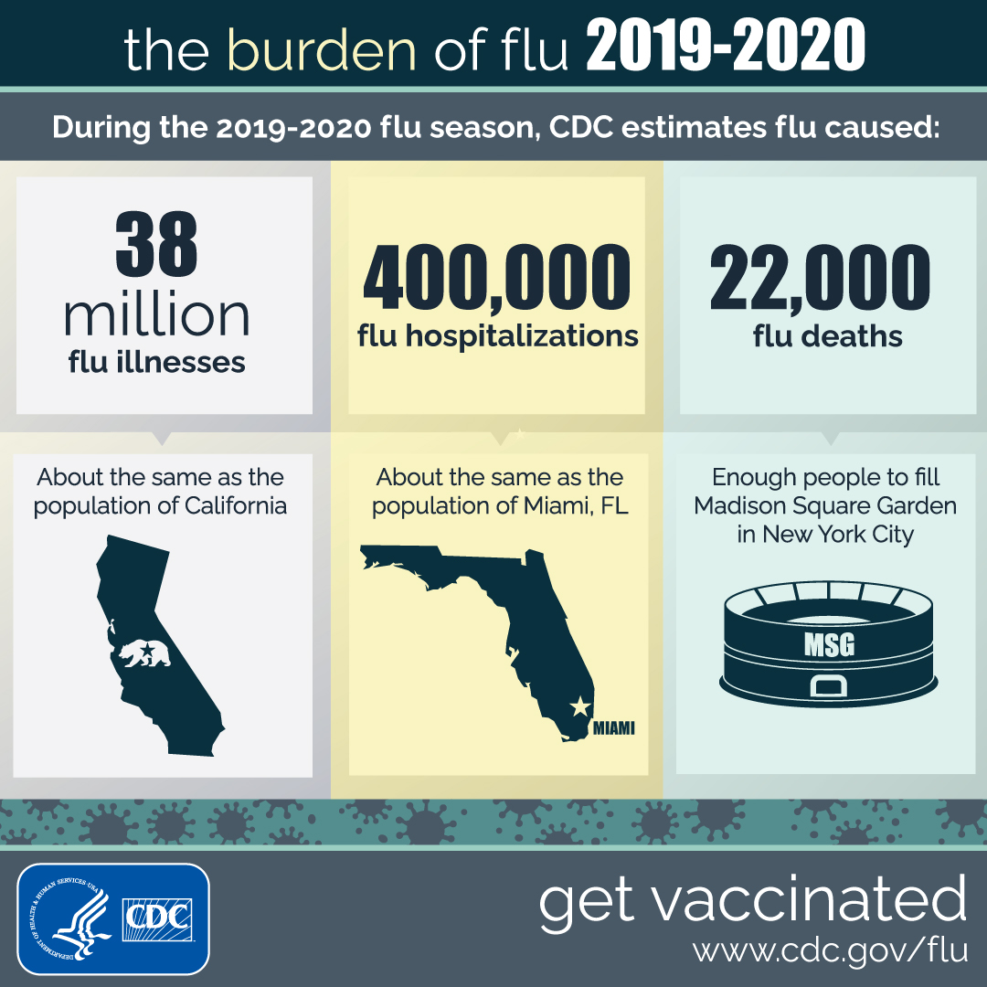 Estimated Influenza Illnesses, Medical visits, Hospitalizations, and Deaths  in the United States — 2019–2020 Influenza Season | CDC