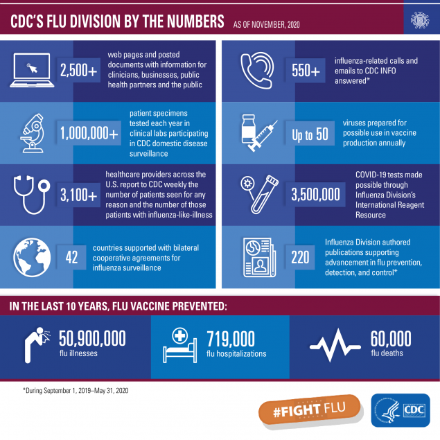graphic of information on CDC's Flu Division by the Numbers