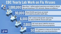 Lab Work on Flu Viruses