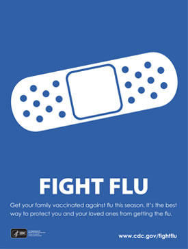 Fight Flu Poster