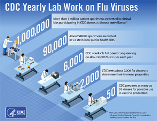 CDC Yearly Lab Work on Flu Viruses