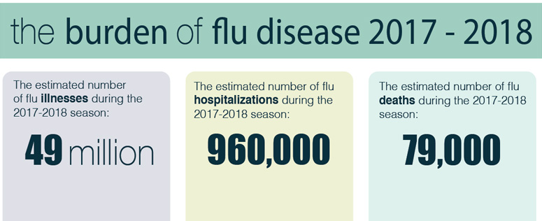 the burden of flu disease 2017-2018