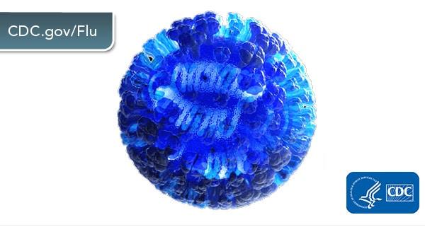 flu-virus-twitter-600px.jpg