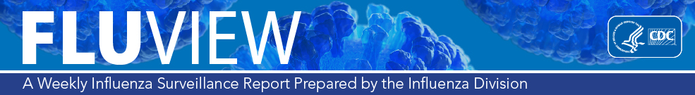 FluView, un informe semanal sobre vigilancia de la influenza realizado por la División de Influenza