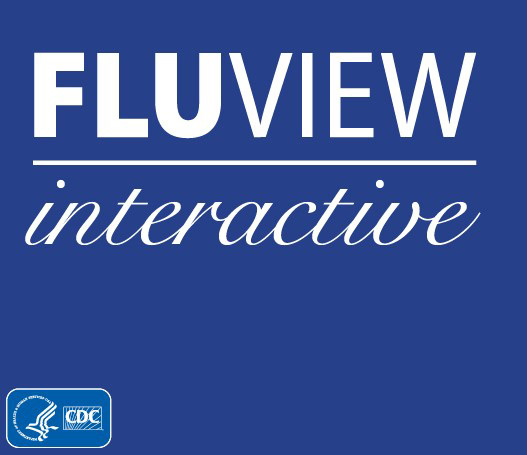 fluview interactive