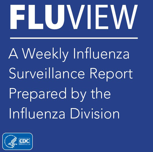 Fluview a weekly influlenza surveillance report prepared by the influenza division