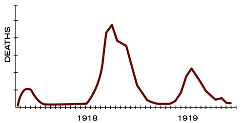 Graph: 3 different waves of influenza