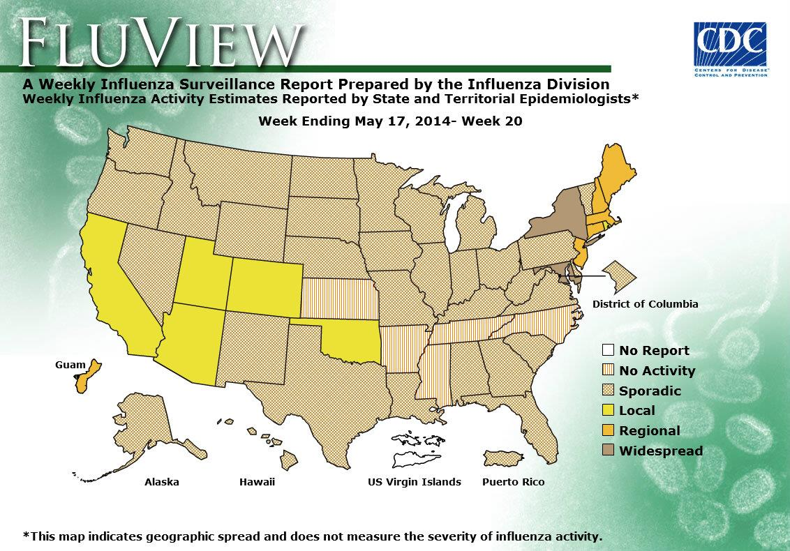 Weekly Flu Activity Map: Week 20